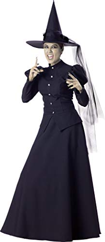 witch adult size costume