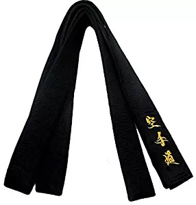 martial black belt japanese karate street fighter