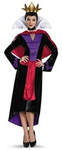 Womens Evil Queen Adult Costume 125x300