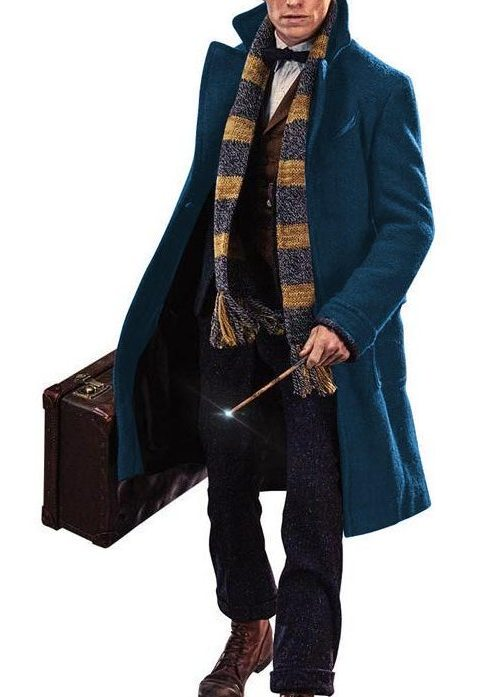 Image result for newt scamander