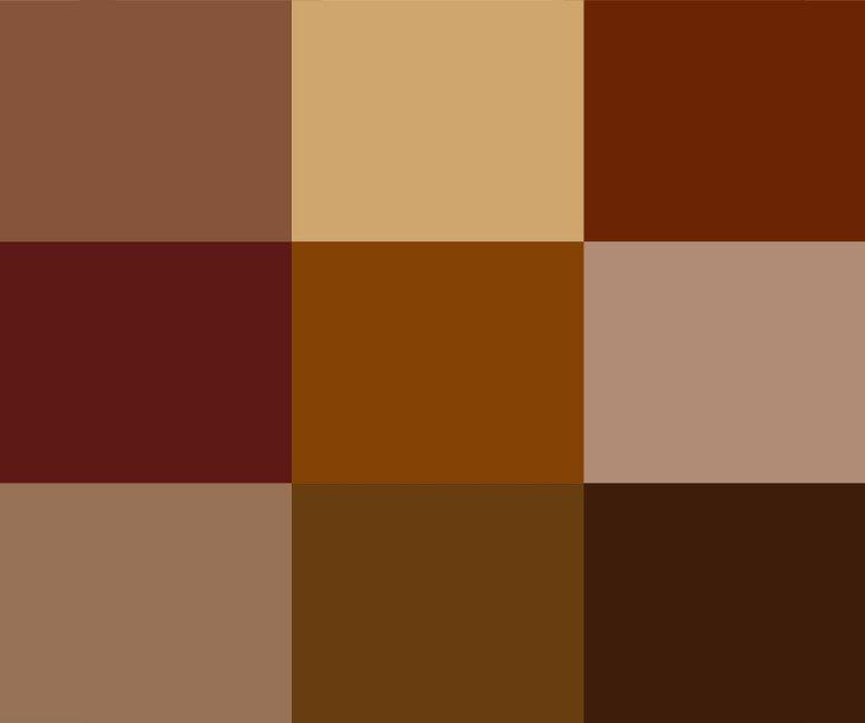 jacket-colors.jpg